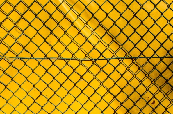 the-fence-428562_1280